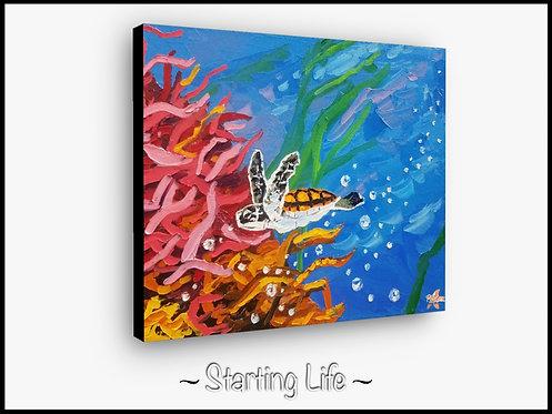 Starting Life