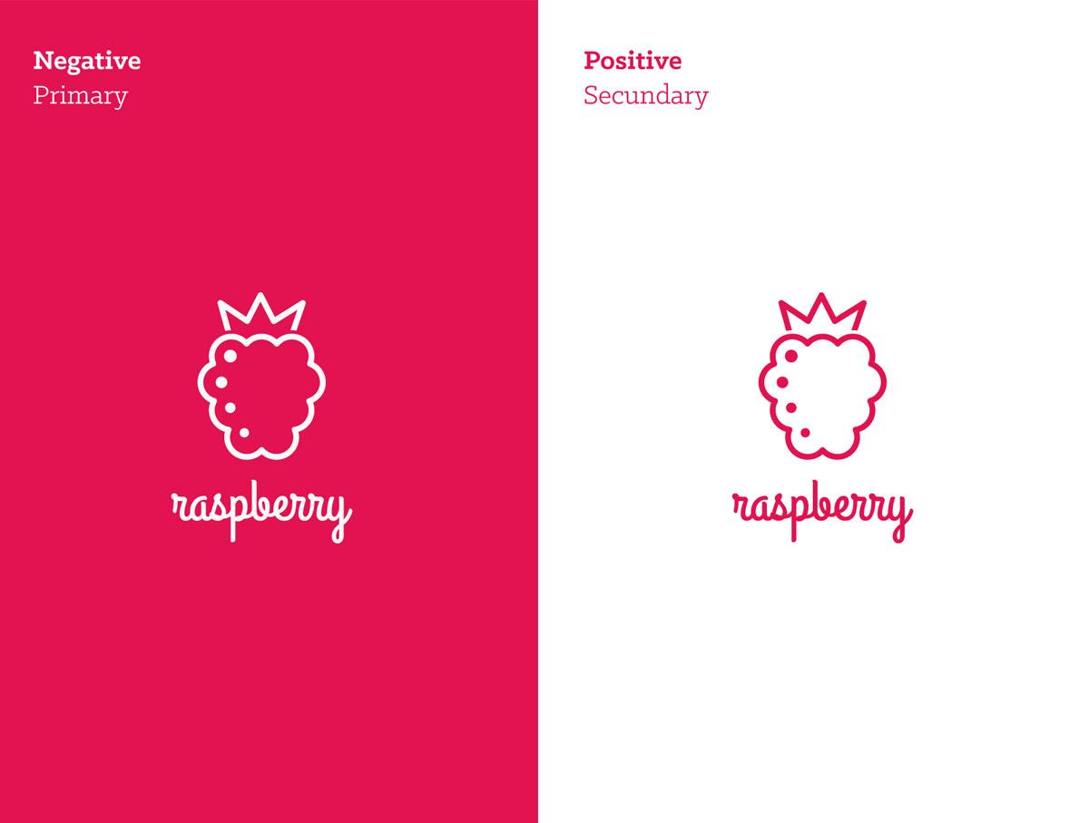 raspberry_logo_aps_guilherme_albuquerque