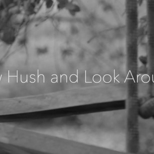 "[Video Premiere]: Mattia Loris Siboni - ""Now Hush and Look around"""