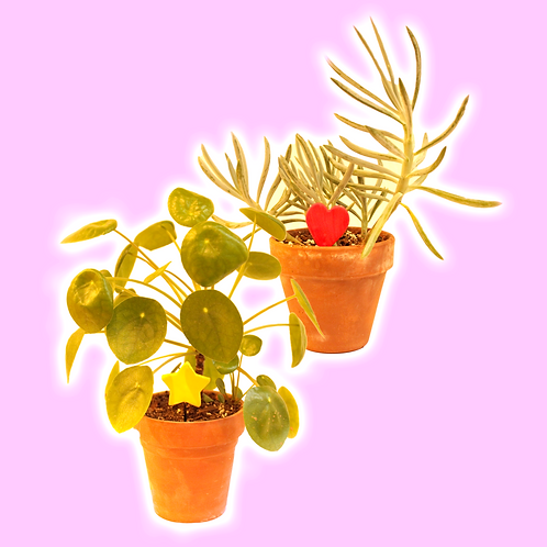 ★ PLANT CHARMS ★
