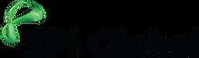 spi global logo.png