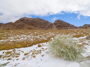 Jabal Al-Lawz, Sebuah Gunung Yang Memiliki Kondisi Langka