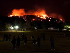 Wakakusa Yamayaki, Festival Pembakaran Gunung Yang Unik
