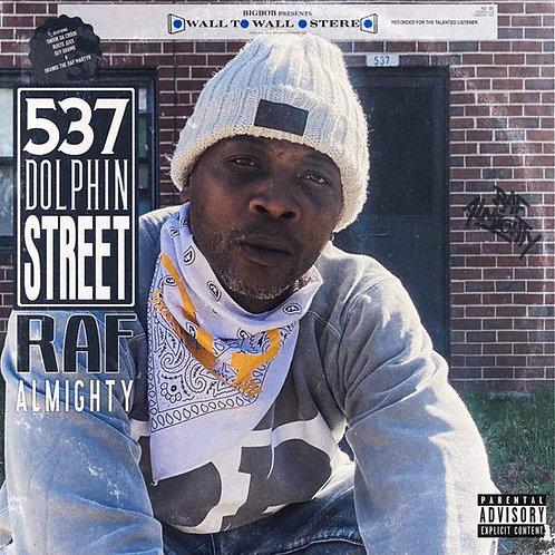 537 Dolphin Street-VINYL