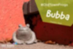 Bubba FB-01.jpg