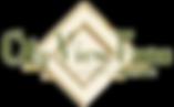CVF Logo_edited.png
