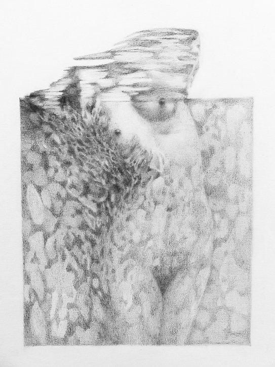 Symbiose, graphite sur papier 21x29,7 cm
