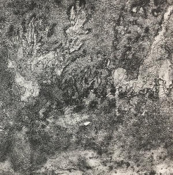 Microcultures lithographiques, papier arche 20x25cm