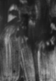 Histoire de sillons, graphite et encre sur papier 12x19 cm