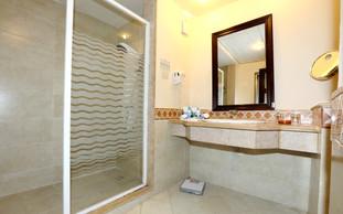Standard room bathroom.jpg