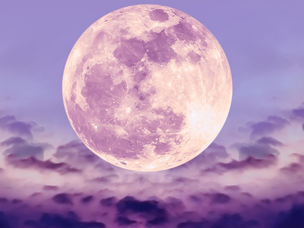 Acquiring Knowledge | Full Moon, August 3, under Shravana