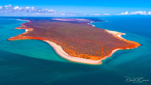 Discover Shark Bay
