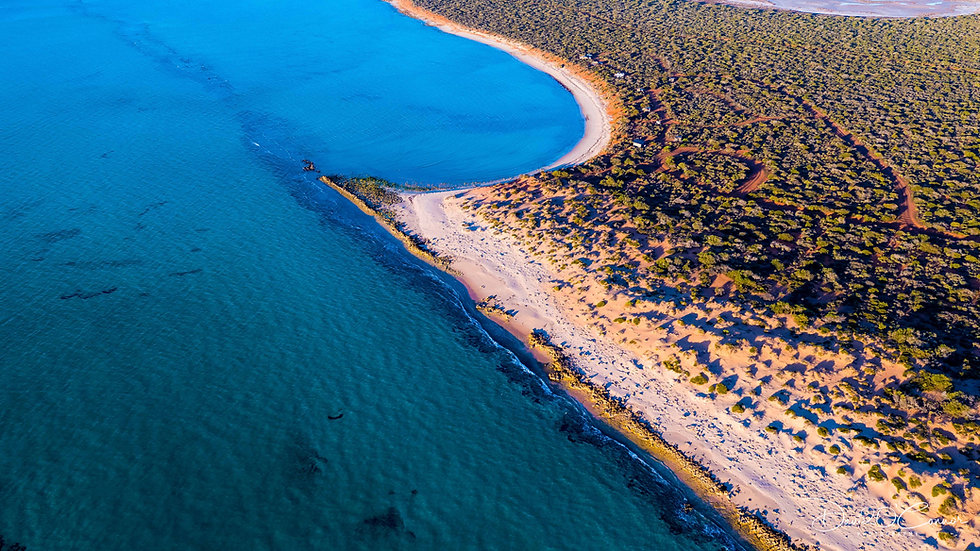 Gregories Reef