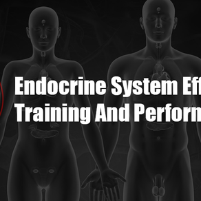 Endocrine System Effects On Training And Performance | Testosterone, Growth Hormone ETC.