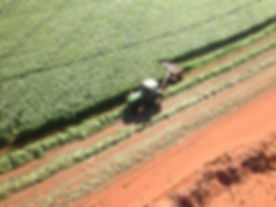 AER Aerial.jpg