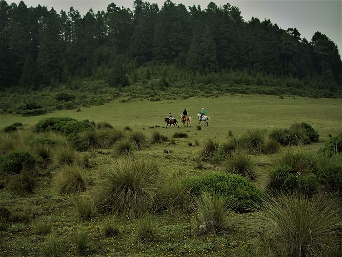 hills of Salazar