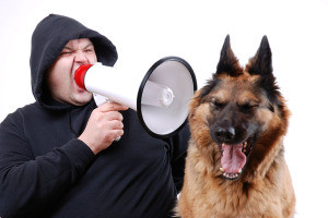 man talking through megaphone to dog