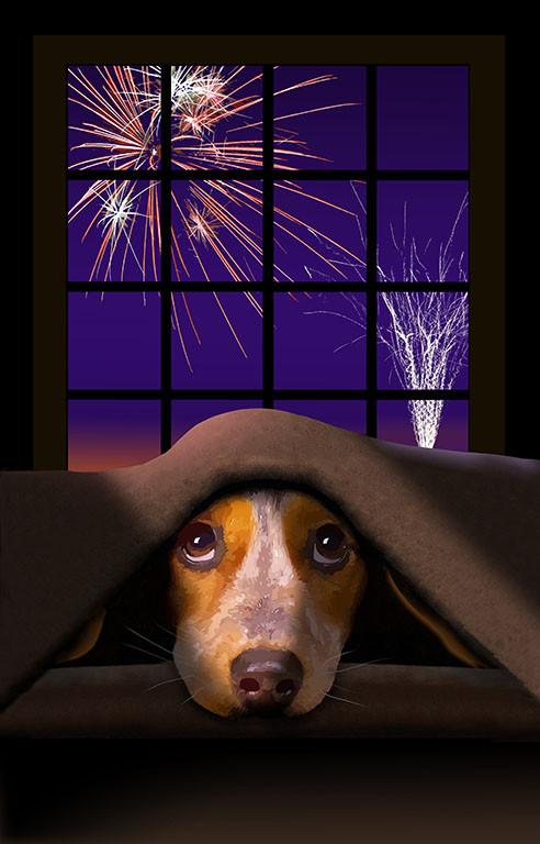 thunderstorm phobic dog