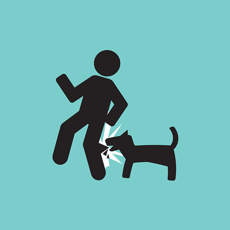 graphic of dog biting person