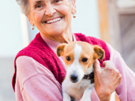 At the Shelter: Can We Put People in the Mood to Adopt?