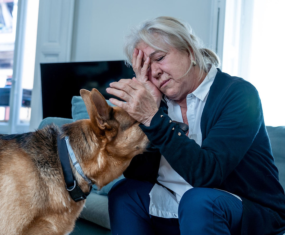 woman feeling guilty with dog