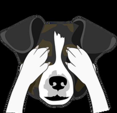 bad dog trainers