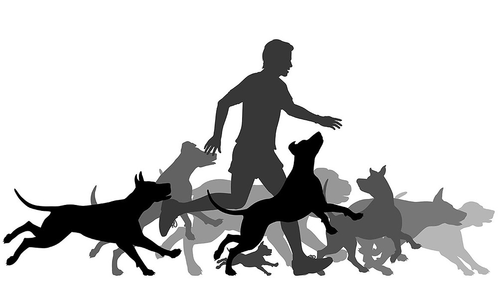 graphic man with pack of dogs silhouette