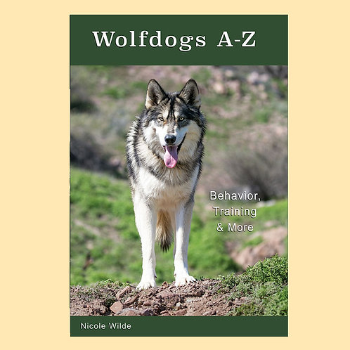 Wolfdogs A-Z: Behavior, Training & More