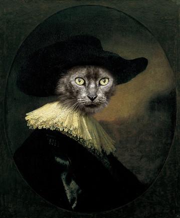 Green ruffle cat