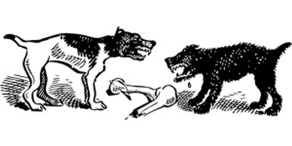 graphic of two dogs about to fight over a bone