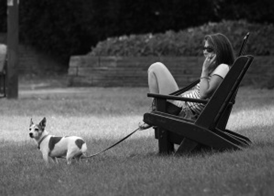 woman talking on phone ignoring dog