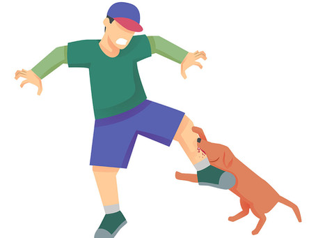 Four Fabulous Ways to Get Bitten by a Dog