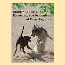 Dog-dog play.jpg