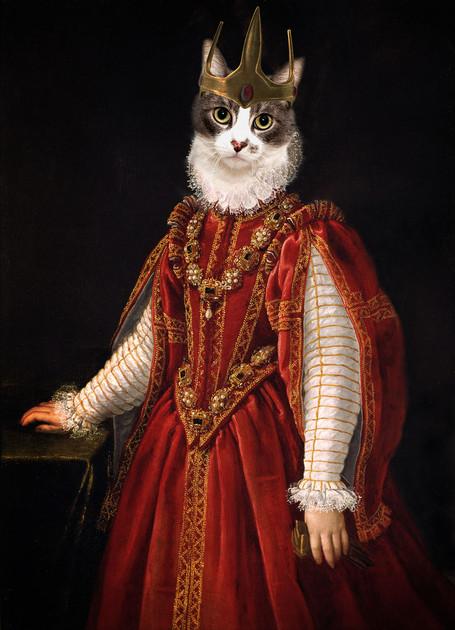 Red cat queen
