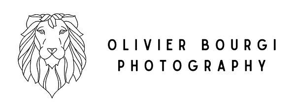 Photographe de la région de Charleroi (Gerpinnes). Mariage, entreprise, architecture, concerts...