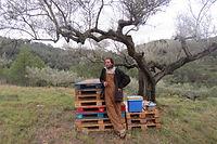 olive grove farmer