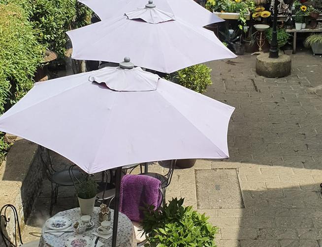 The Lavender Tea Rooms 5.jpg