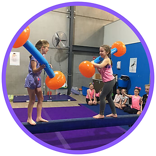 gymnastics birthday party. gymnastics host. kids. come to you. gymnastics at home. fun, friends. Hunter Region