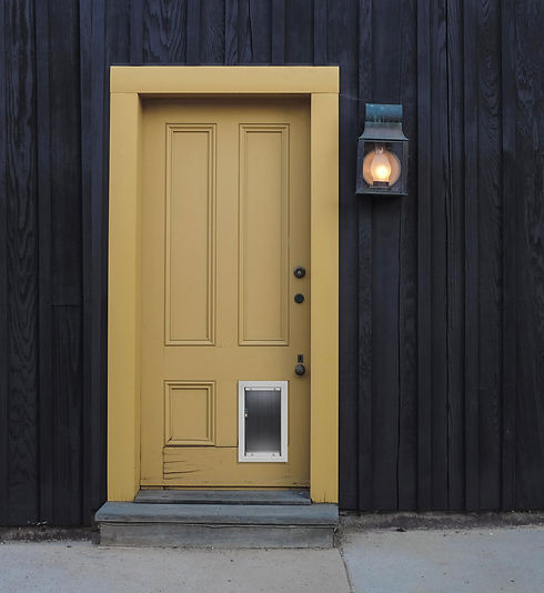 Animalistic pet door in yellow door.jpg