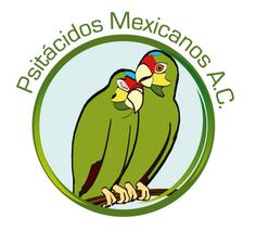 Psitamex A. C.: Lektorat und Korrekturen