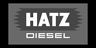 hatz-diesel-logo-industry-billwerk-reference-sw-500x300-1-500x250.png