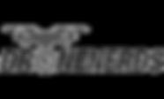dronenerds-logo-BW.png