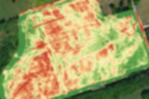 vegetation analysis uav drone