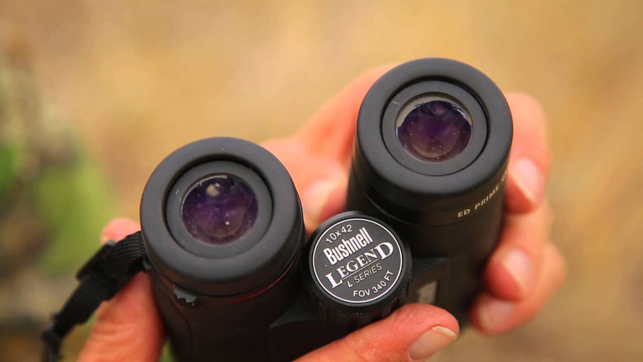 Binoculares Bushnell.jpg