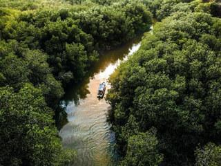 Depuis les villas, vous pouvez vous aventurer dans le lagon de Chacahua, où pendant une journée entière. Vous serez d'abord guidé vers la ville de Zapotalito, vous prendrez un bateau et naviguerez sur les îles flottantes formées par les mangroves.