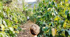 Poznávací zájezd Kostarika 2021