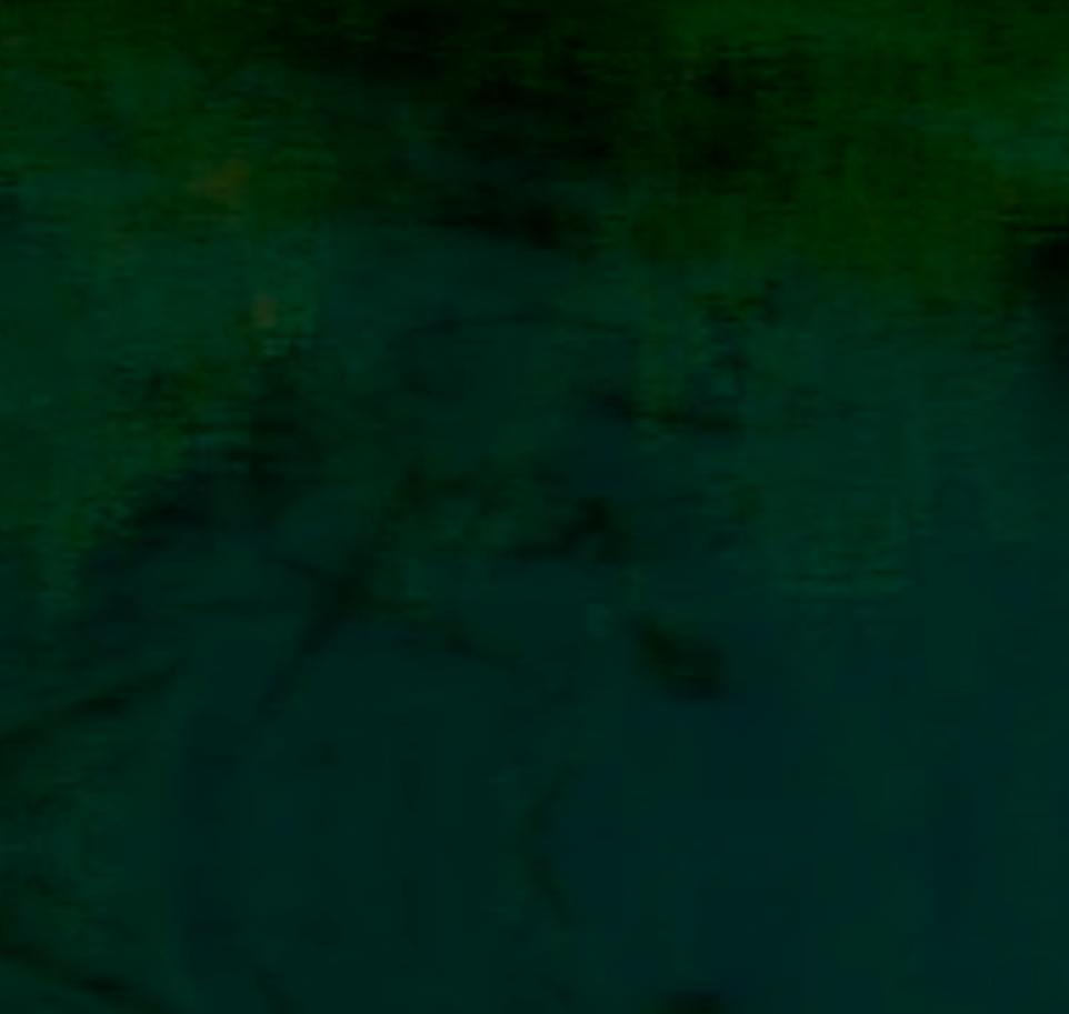 Screen Shot 2020-12-05 at 6.34.00 pm.png