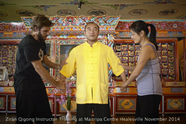 Ziran Qigong 2014 Instructor Trainin