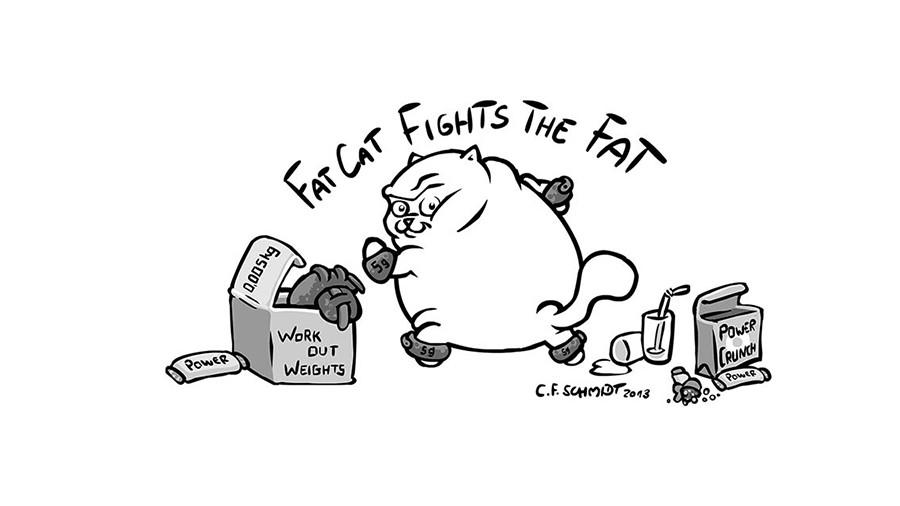 fatcat-087.jpg