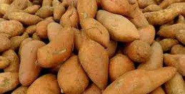 Patate douce 1kg ( Bretagne )
